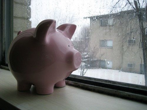 Piggy Bank Awaits the Spring