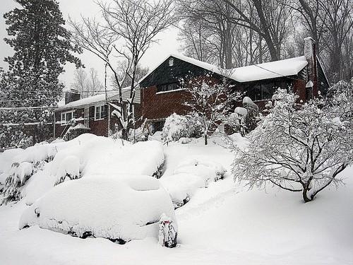 2010 Feb 6 u