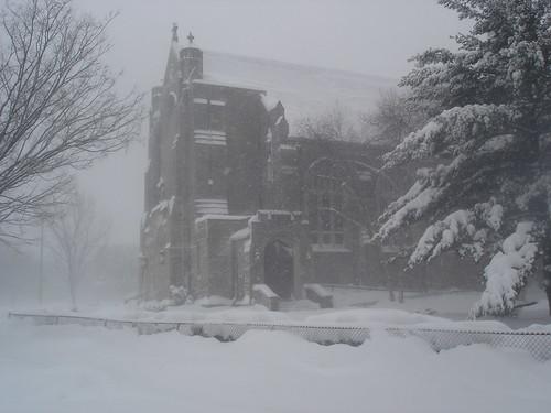 Morning Blizzard