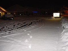 Snowstorm Feb2010 004
