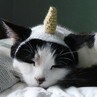 by xmoonbloom Flickr & Ravelry: Unicorn Costume Pet Cat Dog Hat Headband pattern by Lindsay ...