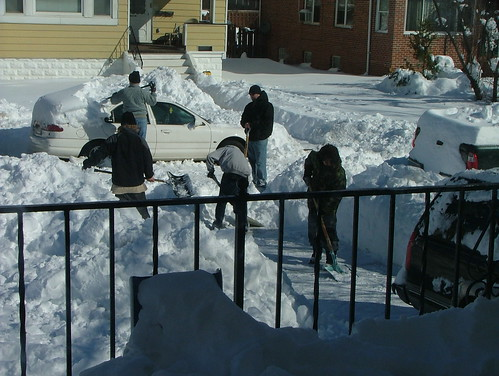 February 2010 snow 006