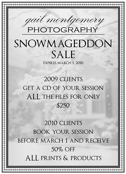 Maryland Photographer SNOWMAGEDDON SALE