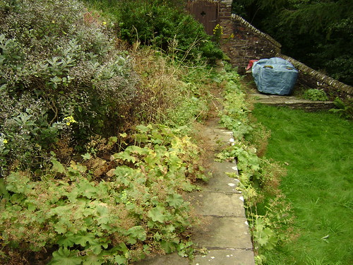 Landscape Gardening  Alderley Edge Image 24