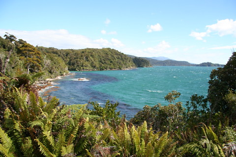 Coastline of Rakiura walkway