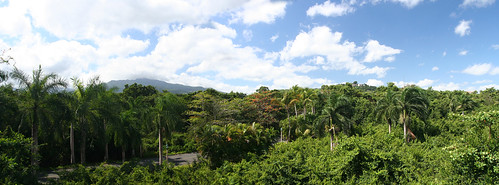 view of El Yunque from the valet area