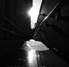 Small World (Andy Koo) Tags: blackandwhite sun reflection puddle angles sidewalk walkway railing passage sunflare