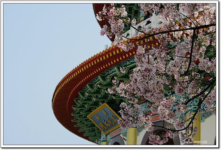天元宮,櫻花 (8)
