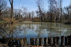 """il laghetto della reggia (wallace39 """" mud and glory """") Tags: italy pond italia emilia strap parma laghetto reggia colorno"""