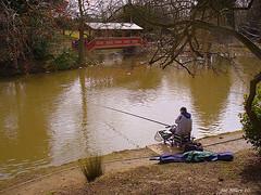 merseyside park (exacta2a) Tags: liverpool fishing lakes parks birkenhead ponds merseyside angling