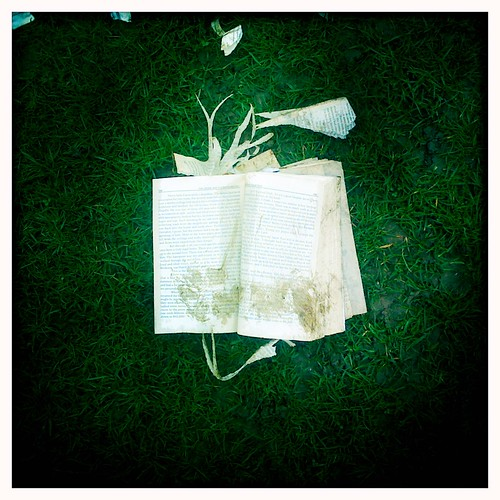 Torn book on grass