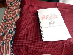 Matt's Quilt w book inside the pillowcase 012