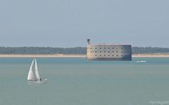 19 - Fort Boyard (emvri85) Tags: sea mer island ile waterscape le iledaix charentesmaritimes ledaix lesduponant