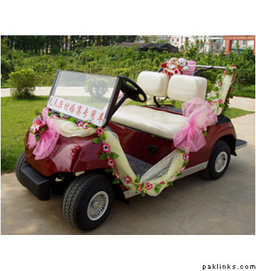 Indian Wedding Car Decoration Photos Image Search Results