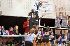 IMG_3926 (SJH Foto) Tags: girls net club lava team jump battle tournament spike volleyball block tops 18s u18s 31310