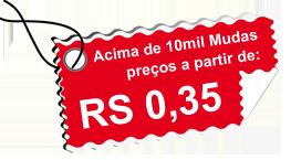 Acima de 10mil Mudas preços a partir de R$ 0,35