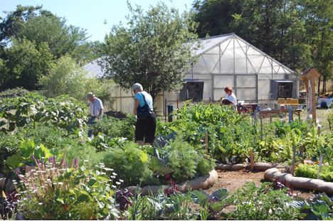 Abundant harvests are shared amongst gardeners and community service programs.