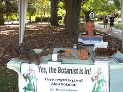 Yes, the Botanist is in! (Just Back) Tags: sc fruit museum booth campus table pod cone columbia exposition usc identification thorns botany herbarium botanist plantman mckissick