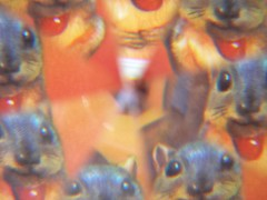 Squirrel diamond vision (Archie McPhee Seattle) Tags: seattle camera lens toy weird squirrel diamond novelty acorn gift archie wallingford mcphee whiteelephant archiemcphee