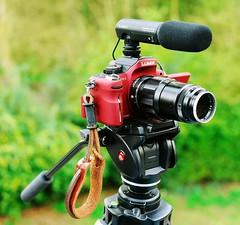 Panasonic GH1 M Mount Leica 135mm f4 Tele Elmar