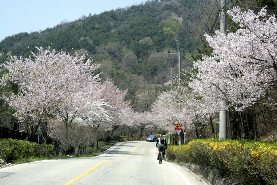 Daecheong Lake road(2)