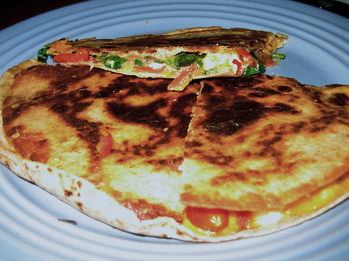 4/26/10 - Homemade quesadillas