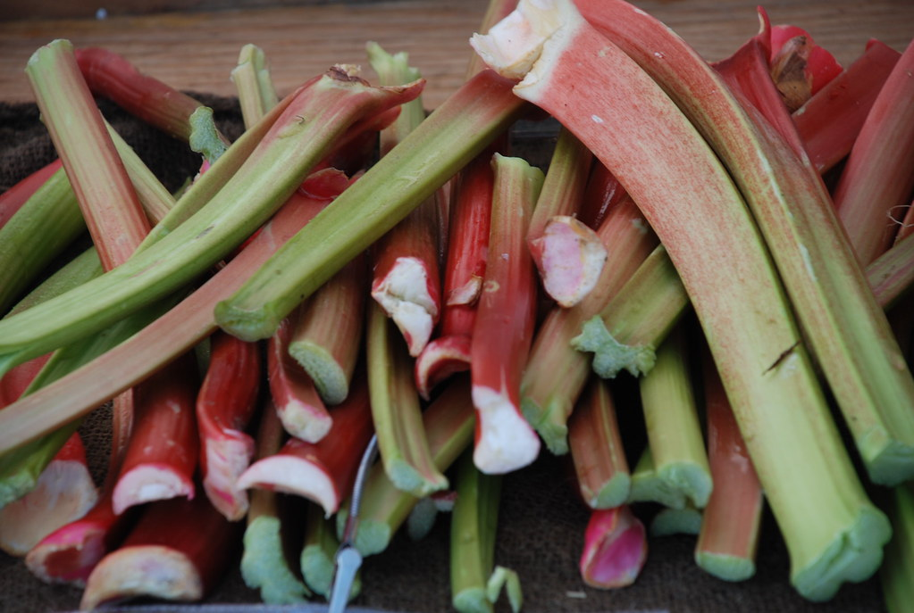 rhubarb from Wilklow Orchards