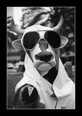 You Looking At Me? (Dave_Davies) Tags: art peru public statue cow hoodie lima nike attitude miraflores