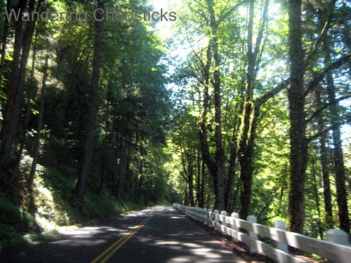 Day 4.7 Historic Columbia River Highway - Columbia River Gorge - Oregon 4