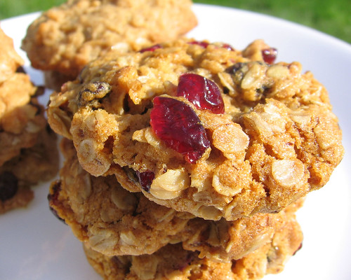 oatmeal cranberry raisin cookies