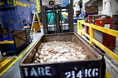 Philadelphia Cent blanks