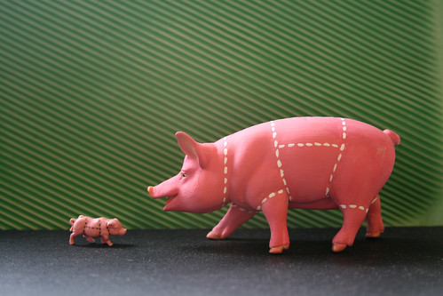big and little 3d pigs meet