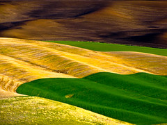 Farm Fields (1bluecanoe) Tags: abstract color rural landscape farming scenic shapes wa experimentation landforms rollinghills lr undulating palouse 1bluecanoe