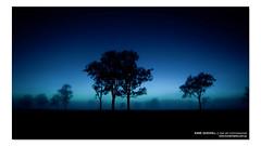 ET Phone Home ([ Kane ]) Tags: city morning blue trees sky mist cold tree fog night dark stars photography dawn early glow space workshop kane et ipswich workshops gledhill kanegledhill wwwhumanhabitscomau kanegledhillphotography