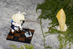 Leaf me Alone! (katsuboy) Tags: japan toys japanese cosplay saber alter limited figures maid limitededition fatestaynight hobbyjapan bfigure fatehollowataraxia saberalter maidsaber