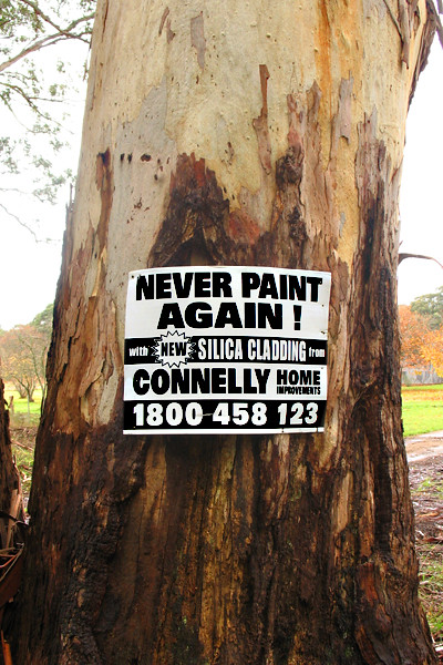 2010.05.28_NEVER PAINT AUSTRALIAN LANDSCAPE AGAIN_400