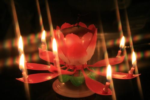 twinkle twinkle little birthday candle