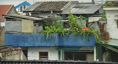 Modern & Old (KC Toh) Tags: old roof plants modern top satellite disc d90