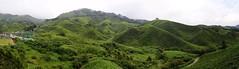 Vue de Bow tea Plantation à Cameron Highland