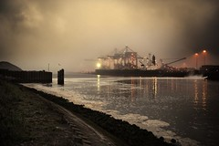 Corus harbour (HanslH) Tags: industry fog gull pollution ijmuiden corus hoogovenkanaal