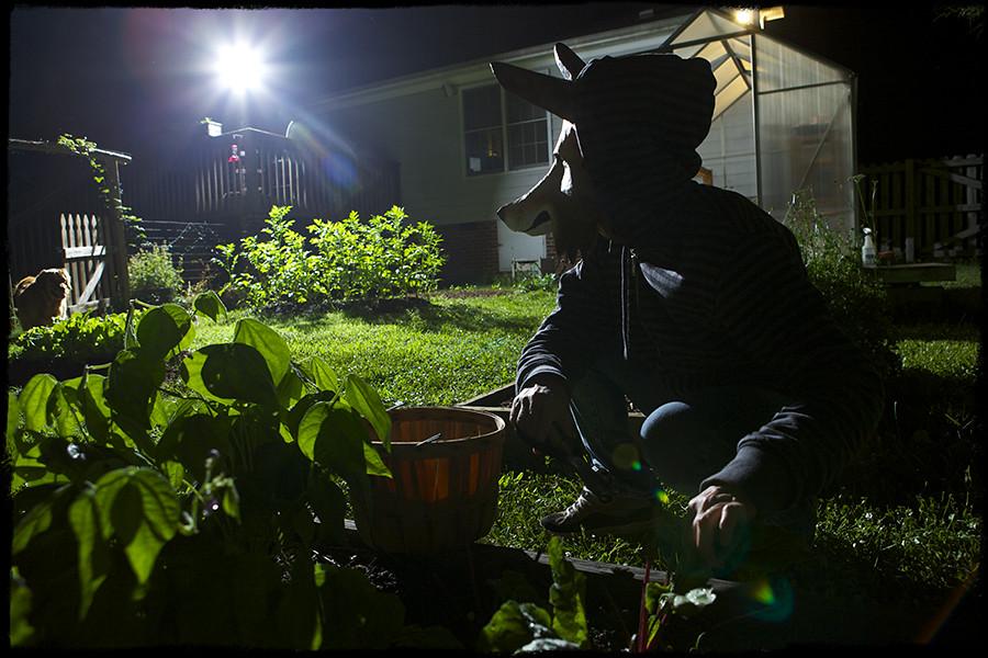 158/365: Garden Thief.