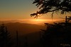 Brother's in Arms (P. Oglesby) Tags: trees mountains landscapes silhouettes sunsets f22 clingmansdome thehighlander godlovesyou blueribbonwinner coth supershot greatsmokymountainsnp absolutelystunningscapes yourwonderland coth5 photocontesttnc11