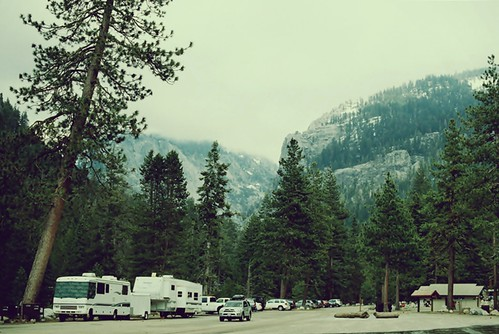 Lodgepole campground on film