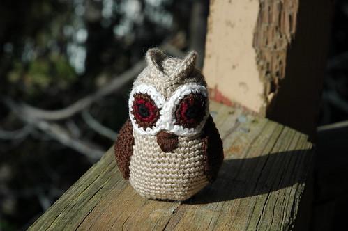 Owl Wings 6