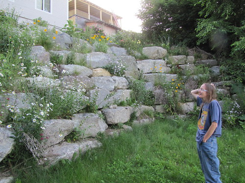 admiring the flowers in our rock wall