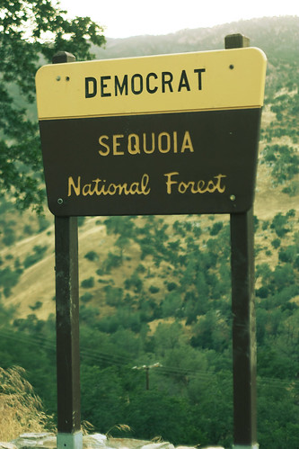 {163:365} Democrat in the National Forest.