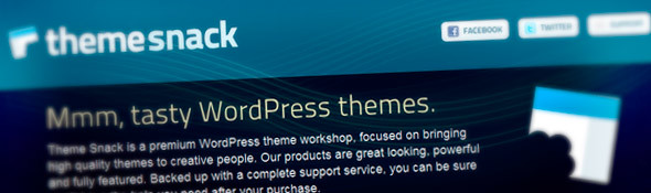 Premium WordPress Themes - ThemeSnack