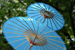 protection (M(elia)) Tags: parade protection paperumbrellas sooc bokehrama