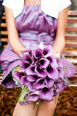 L'amore di settembre (L e t i) Tags: wedding love purple september bouquet viola letizia settembre addiction amore matrimonio maccarini tavazzani lvphotography