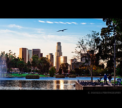 Echoes (Emmanuel_D.Photography) Tags: california city people usa birds losangeles downtown echopark pinoy emmanuel astig dasalla